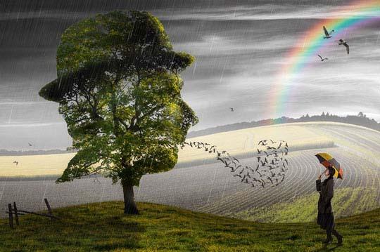 Una nueva colección de manipulación de fotos hermosas y creativas-02