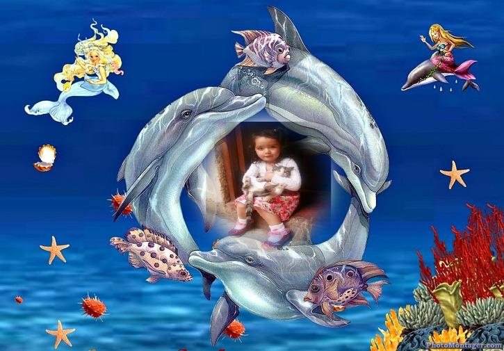 Marco para fotos gratis con delfines | Fotomontajes Divertidos
