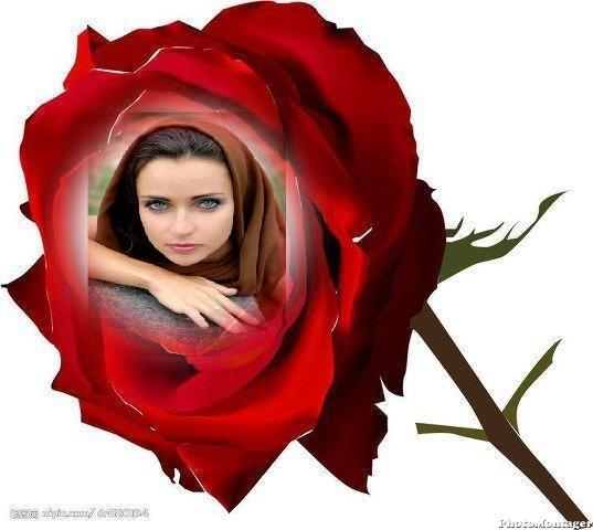crear fotomontajes gratis en rosas