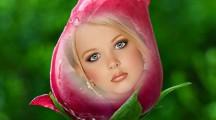 editar imagenes en rosas