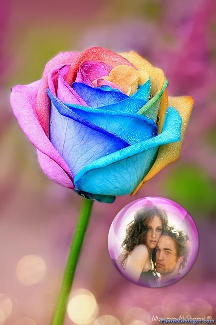 Fotomontaje gratis junto a una flor multicolor