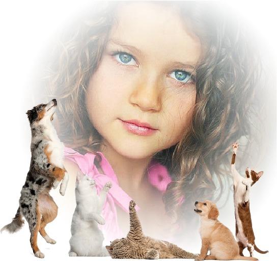Fotomontajes con animales tiernos
