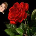 Fotomontaje en un corazón junto a una rosa roja