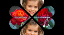 collage de corazones para fotos gratis