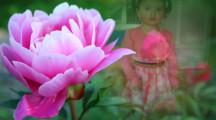 Crear fotomontajes con rosas gratis