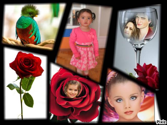Collages gratis para seis fotos