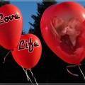 Detalles que demuestran el gran amor que sentimos